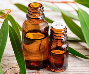 Sauna accessories eucalyptus oil